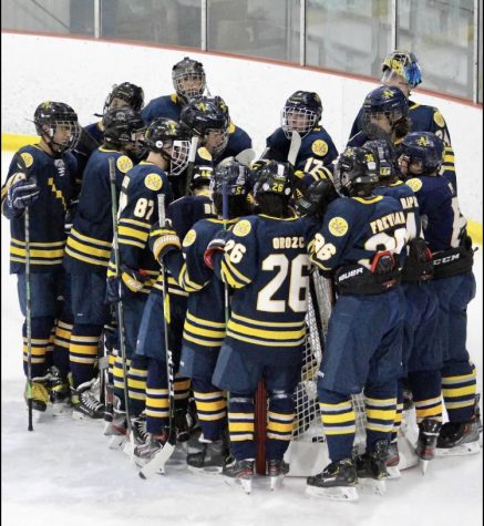 BNI's New and Improved Hockey Team